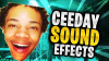 CEEDAT SOUND EFFECTS.png